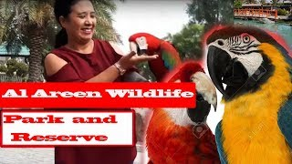Great Adventure - Bahrain Wildlife Park and Reserve.