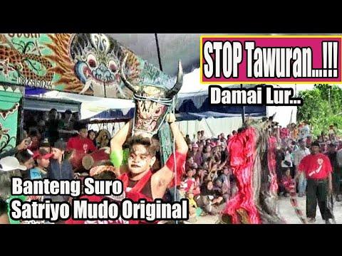 STOP Tawuran !!!--Bantengan Satriyo Mudo Original dng Terpaksa di HENTIKAN---Live Karangsemi Gondang