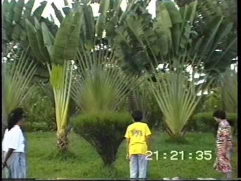Visit to the Botanical Gardens of Guyana 1994