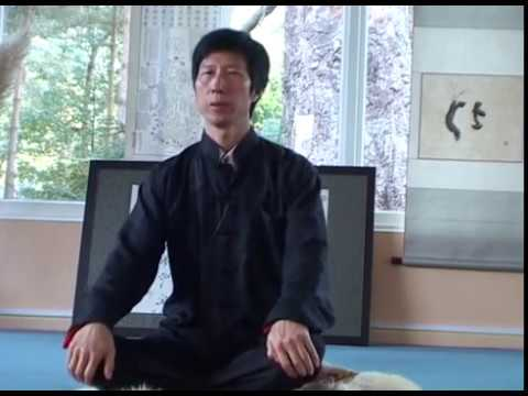 Daoist Internal Alchemy   Zhixing Wang, The Dao Hua Qigong School (UK)