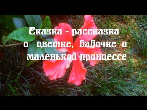 Сказка-рассказка о цветке, бабочке и маленькой  принцессе
