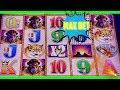 🐃 BUFFALO GOLD 🐃 MAX BET $3 - $6 | BONUS | LIVE SLOTS PLAY ➡️ Deja Vu Slots