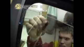 Тонировка Авто(, 2012-12-06T09:41:07.000Z)