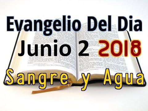 Evangelio del Dia- Sabado 2 Junio 2018- Jesus En Momentos Particulares- Sangre y Agua