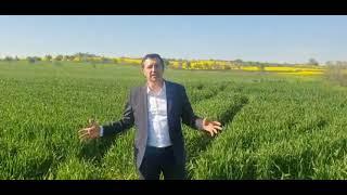 Bill Gates, Trakya'dan arazi mi aldı? Bakanlıktan yanıt: Görüştük ama nezaket ziyaretiydi
