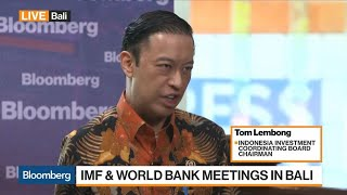 There Is Too Much of a Burden on the U.S. Dollar, Says Indonesia Investment Coordinating Board