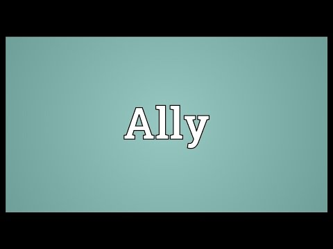 Ally Meaning