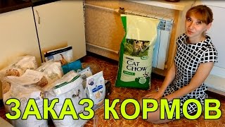 Большой заказ кормов для кошек и аксессуары