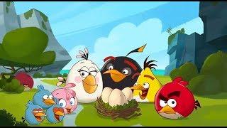 Angry Birds, ЗЛЫЕ ПТИЧКИ, Энгри Бердс, Парк развлечений