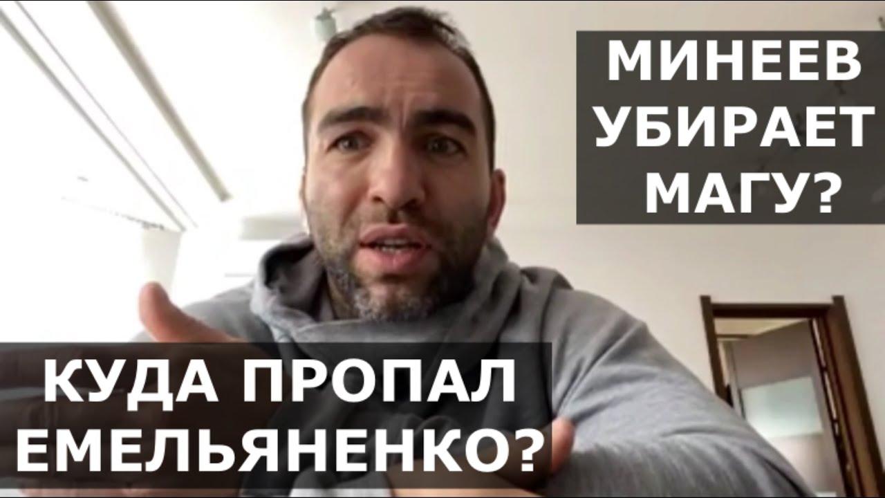 В чем трагедия Емельяненко / Почему Минеев убирает Магу Исмаилова / Разбор от Камила Гаджиева