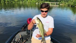 We found the spot! (summertime bass fishing)