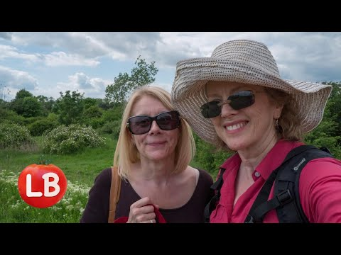 European Gardens | UK | A Walk in Goldhanger  | Travelogue