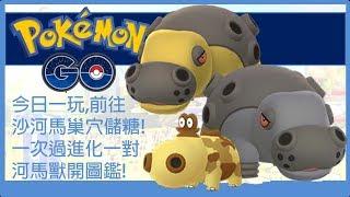Pokemon go 今日一玩,前往沙河馬巢穴儲糖!一次過進化一對河馬獸開圖鑑!