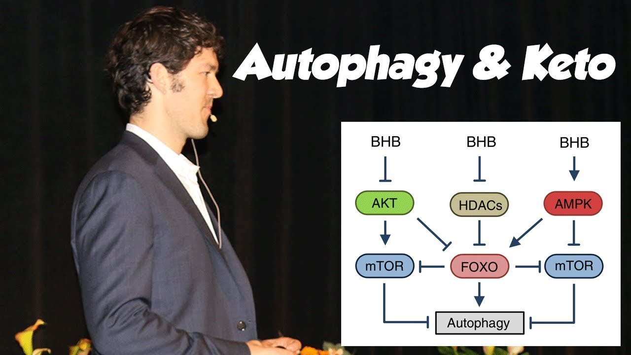 Autophagy, Fasting and the Ketogenic Diet: Science and