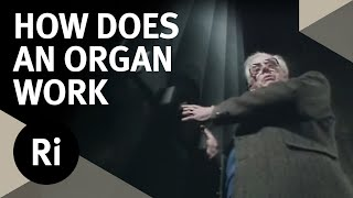 How Does an Organ Work? - Christmas Lectures with Charles Taylor