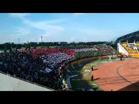 Terharu Aksi Singa Mania Suporter Sriwijaya Fc..Save Palestina