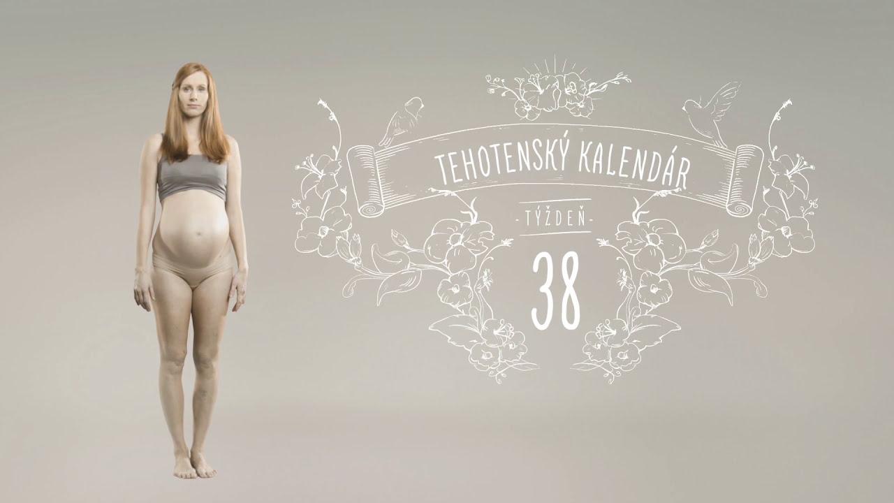 pampers tehotensky kalendar Tehotenský kalendár: 38. týždeň   YouTube pampers tehotensky kalendar