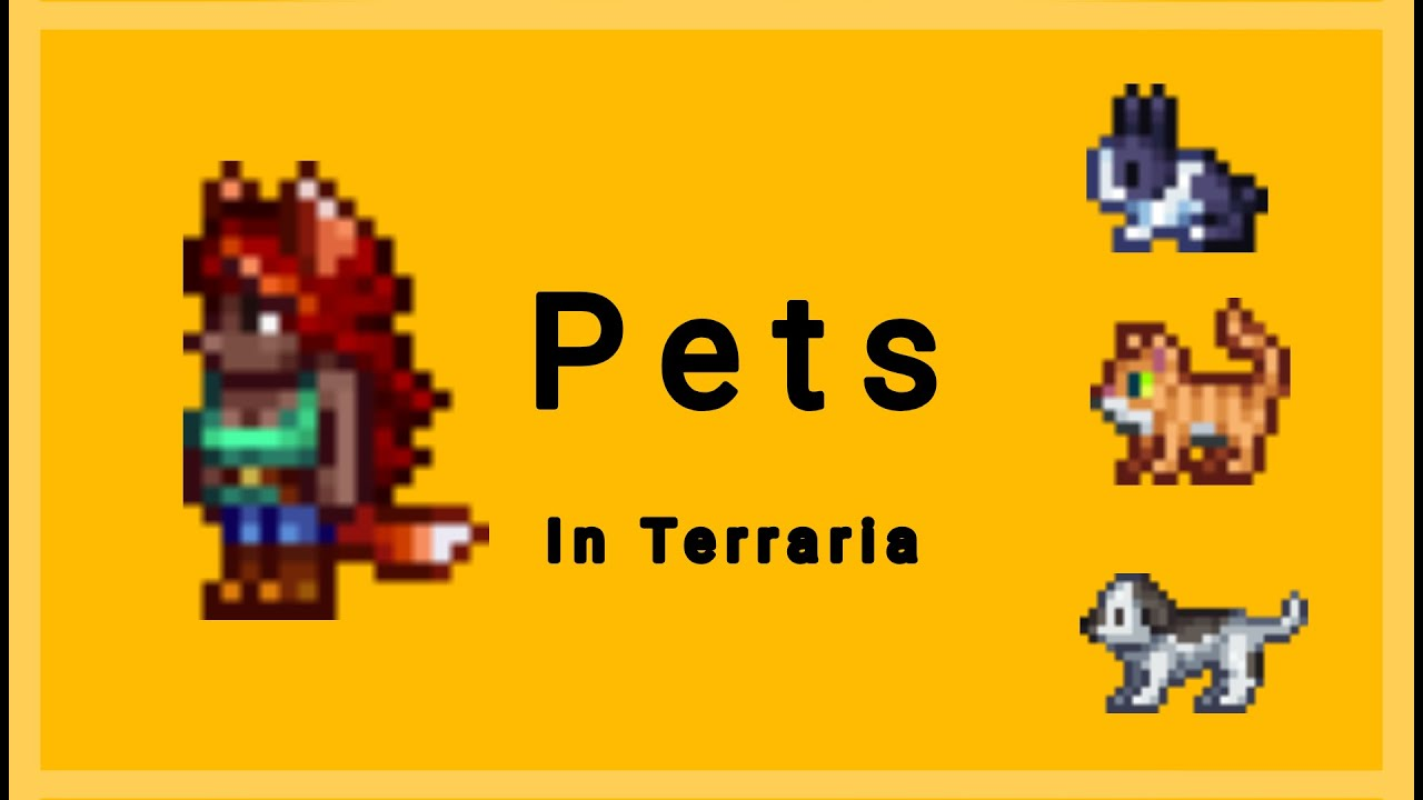 How To Get Town Pets In Terraria Youtube