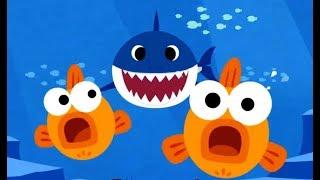 Baby Shark | Animal Songs | Nursery Rhymes For Kids | Songs For Kids