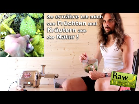 Wildkräuter und Wildfrüchte direkt aus der Natur ???? Meine Tipps für eine wilde und gesunde Ernährung!