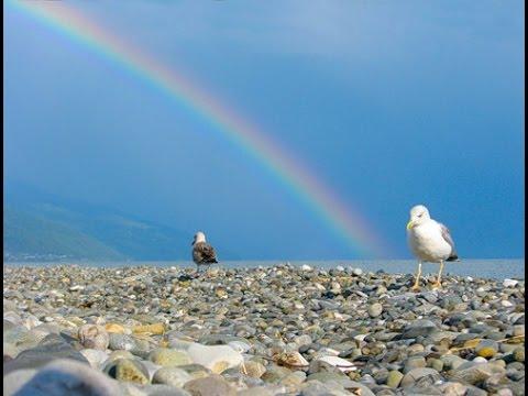 Море людей на море! Меховая шуба на пляже в Лазаревском.  Lazarevskoe SOCHI RUSSIA