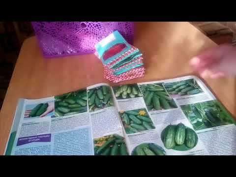 Обзор каталога и условия доставки семян из Садов России