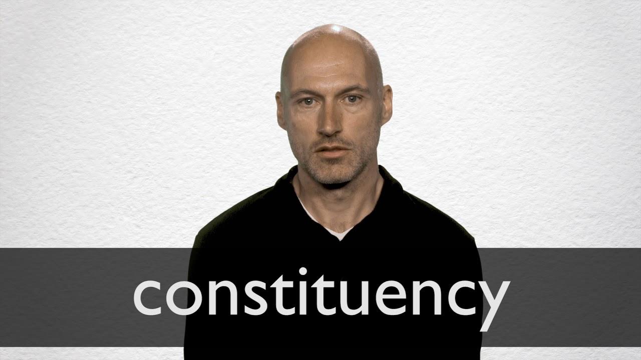 "Hindi Translation of ""constituency"" | Collins English-Hindi"