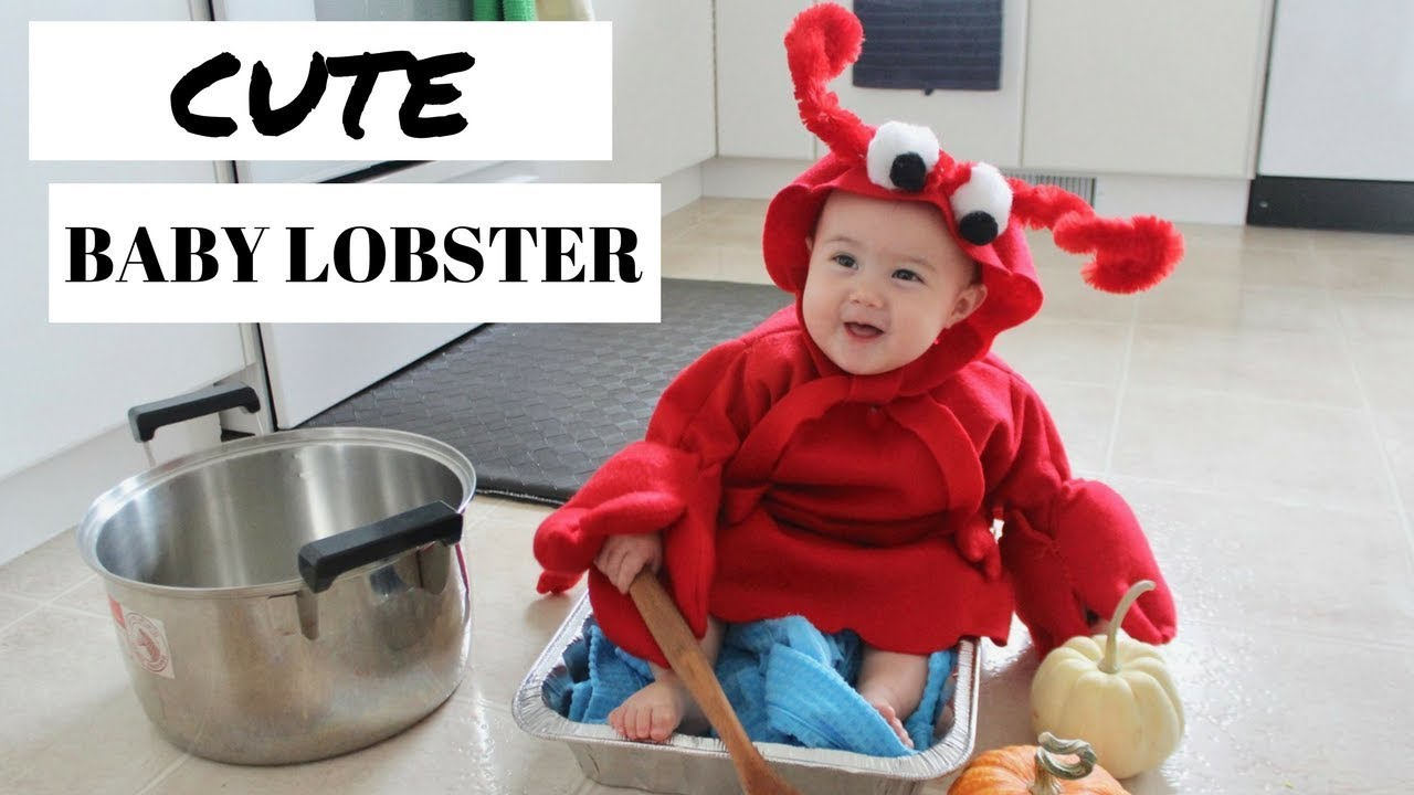 CUTE BABY LOBSTER || Homemade Halloween Costume Inspiration  sc 1 st  YouTube & CUTE BABY LOBSTER || Homemade Halloween Costume Inspiration - YouTube