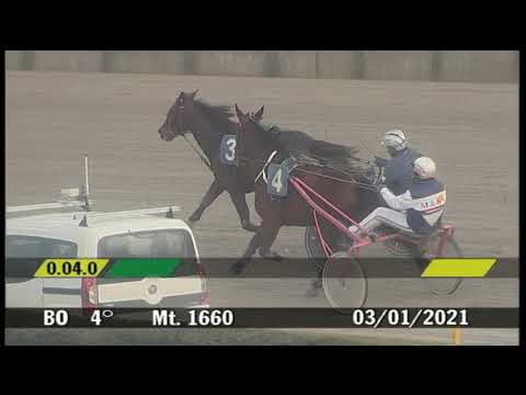 2021 01 03 | Corsa 4 | Metri 1660 | Premio Pitermar