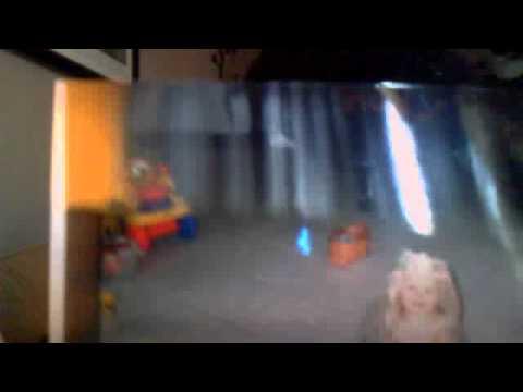 Heaven Daisy miss2742's webcam video December 30, 2011 10:41 AM