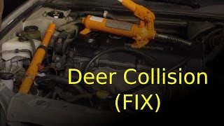 HIT deer! (CHEAPEST way to fix your car)