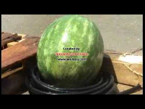 Watermelon Meets Pressure Washer Youtube