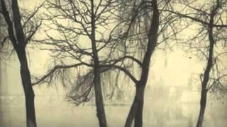 Zelenka-I penitenti al sepolchro del redentore-Sinfonia-Collegium 1704