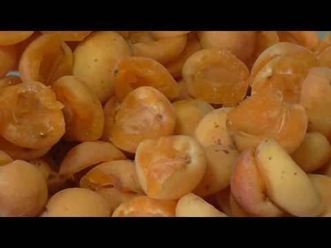 Заморозка абрикос на зиму . Готовый десерт в морозилке из абрикос