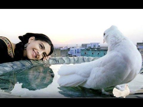 Rehna Tu Full Song  Delhi 6  Abhishek Bachchan, Sonam Kapoor