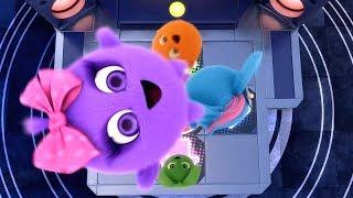 Sunny Bunnies Cartoons || Play Dancing Machine || SUNNY BUNNIES || Funny Cartoons For Children