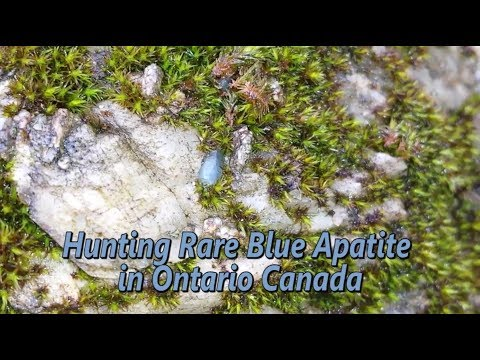 Rare Blue Apatite in Ontario Canada