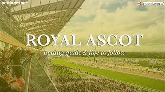 Royal Ascot 2018 betting guide + Top 5 horses to follow