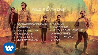 The Wild Feathers Album Sampler