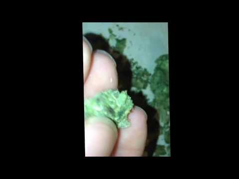 Mids weed fire!!