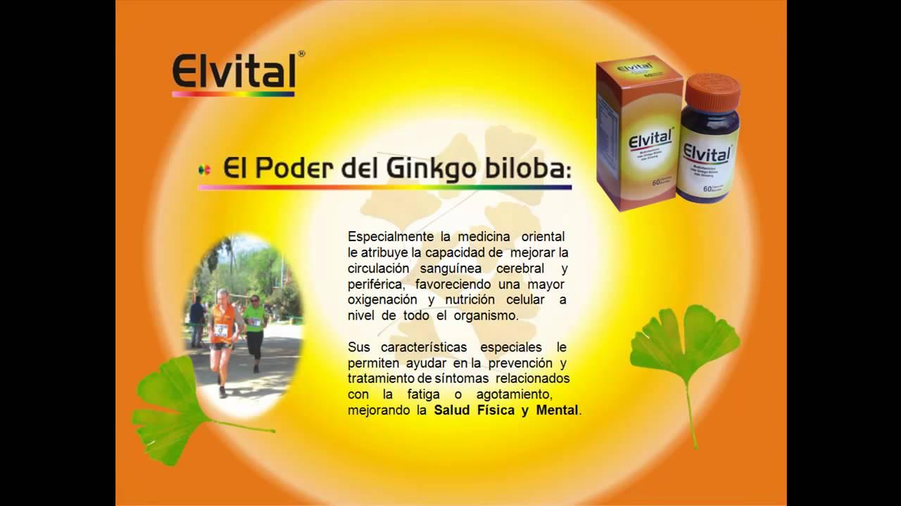 Ginkgo biloba sirve para la circulacion