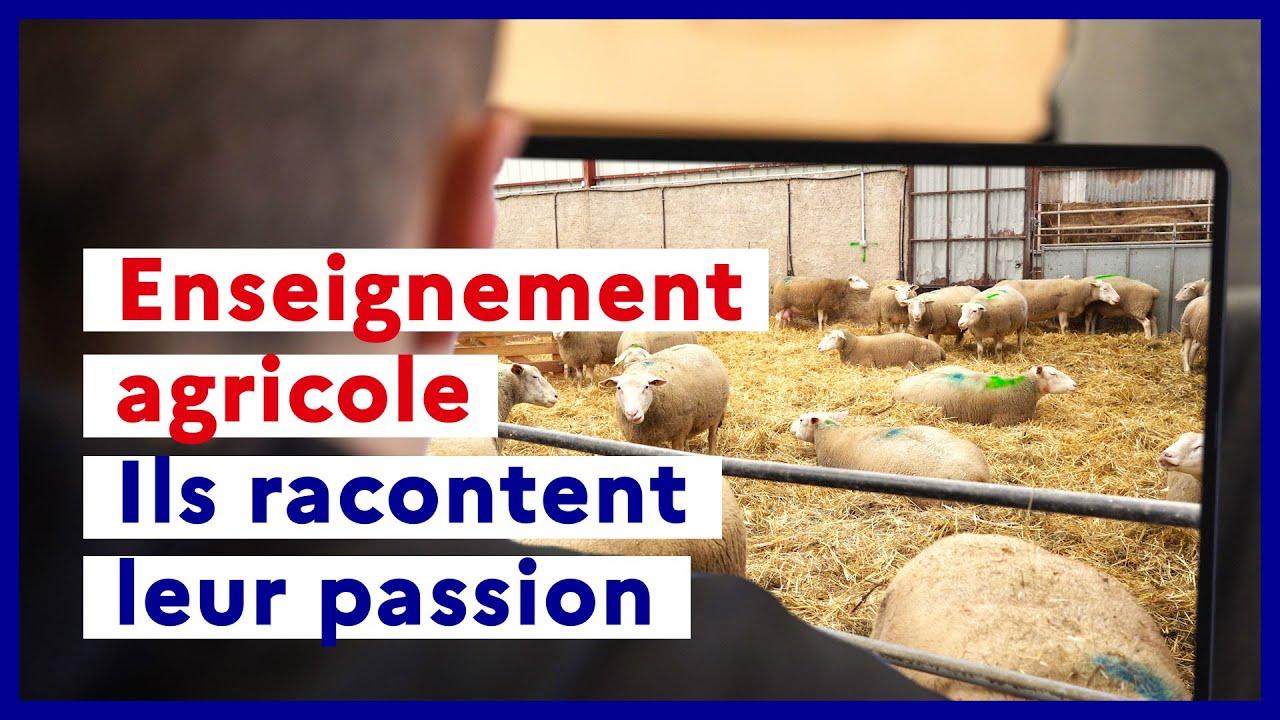 Enseignement agricole : une formation qui prépare à plus de 200 métiers
