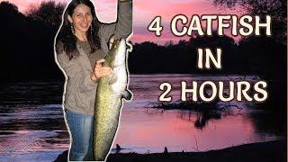 4 Catfish in 2 Hours on Handmade Lures/ Риболов на Сом/ Welsangeln Live Biss/ Pesca de Siluro