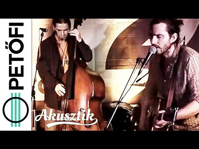 mr2-akusztik-kistehen-elviszi-a-szel-mr2music