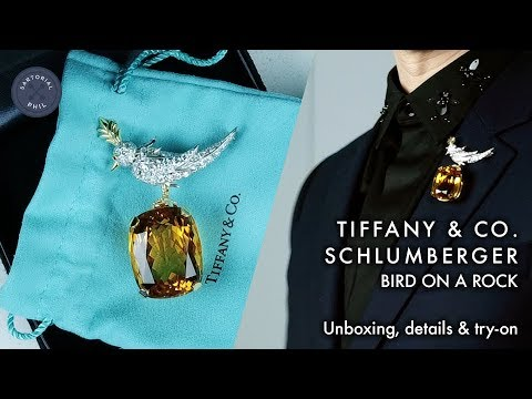 908058c88 Tiffany & Co. Schlumberger Bird on a Rock – Men's Jewelry: Unboxing,  details & try-on
