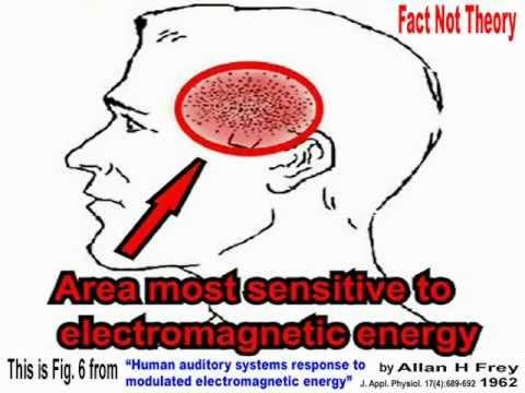 Your Brain's Microwave Sweet Spot