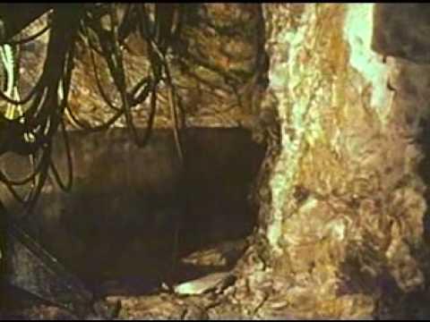 Hydrogen Sulfide Death in an Underground Mine 1973