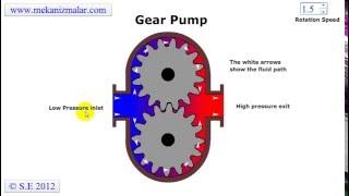 Bơm thủy lực bánh răng - Nguyên lý hoạt động  - How Gear Pump Action