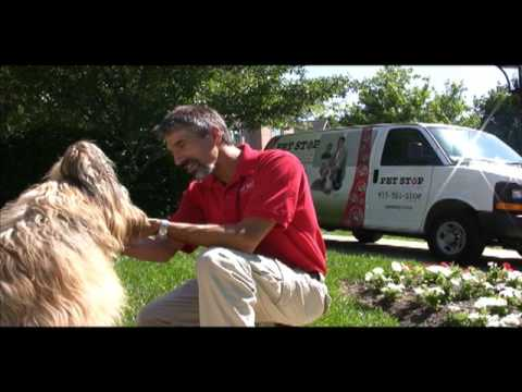Pet Stop Promotional Video