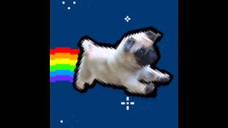 Nyan Pug